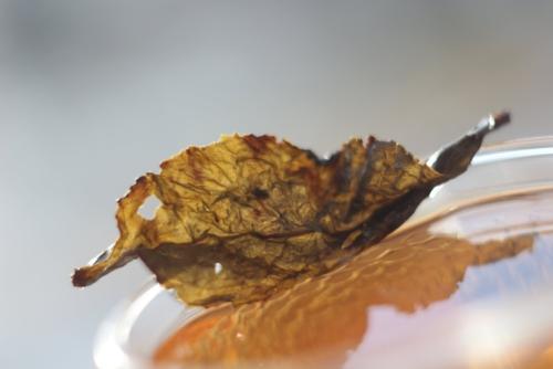 Высокогорный среднеферментированный прожаренный улун Te Гуаньинь