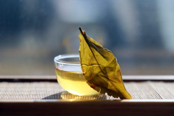 Кенийский желтый чай из Керичо