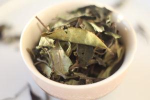 Белый чай из Камелии формозской (Тайвань).