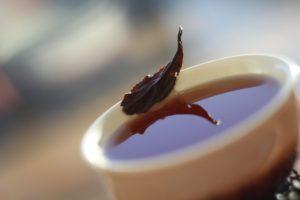 Чёрный чай полусферической скрутки, изготовленный из листьев TTES#12 (Золотой цветок), пораженных цикадками-тифлоцибинами. Уезд Тайдун, Тайвань.