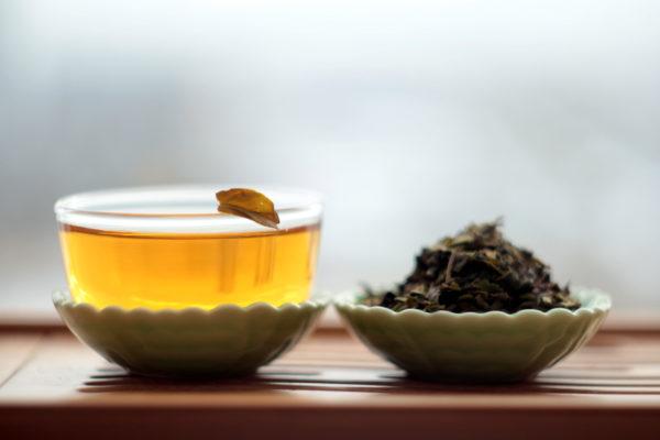 Зеленый чай с Азорских островов