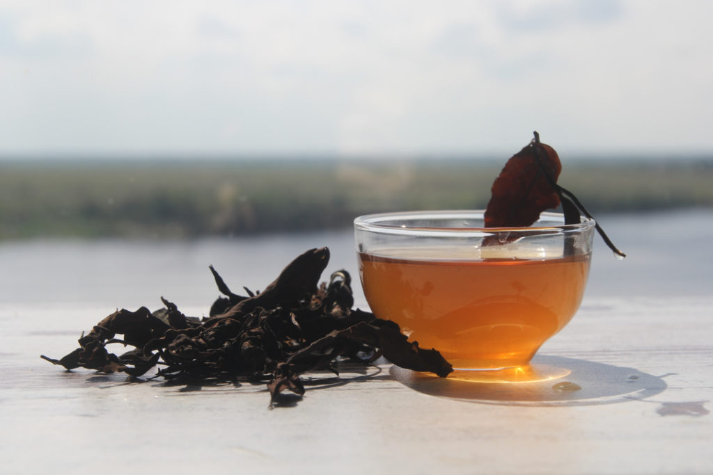 Тайваньский белый чай из антоциановых чайных листьев